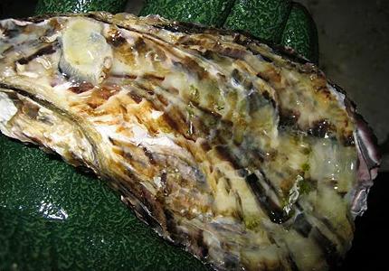 付着物を落とした牡蠣